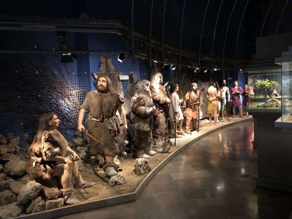Zdjęcie. Sala III Strój, ozdoby i uzbrojenie. 5 par ludzi z różnych okresów pradziejowych – od 70 tysięcy lat przed naszą erą do 3500 roku przed naszą erą. Figury ubrane w stroje z epoki, m.in. w skóry, w dłoniach trzymają broń i narzędzia kamienne i metalowe. Z prawej strony, fragmenty szklanych gablot z makietami domostw. Podłoga kamienna, sufit zacieniony, niewidoczny. Za figurami niebieska ściana, gałęzie, skóry i kości zwierząt.